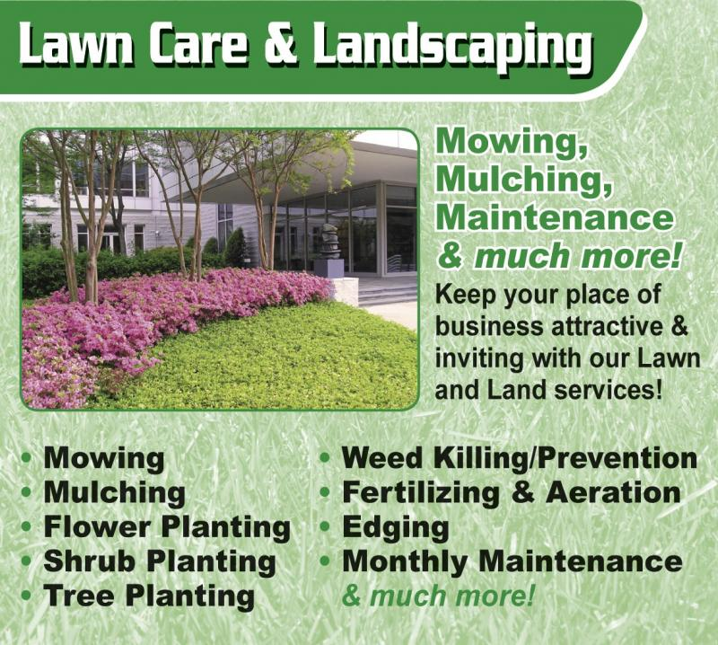 choose lawn maintenance company